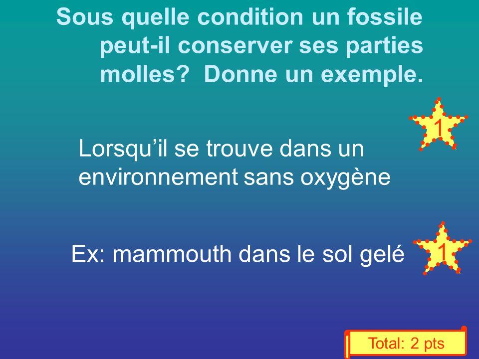 Sous quelle condition un fossile peut-il conserver ses parties molles.