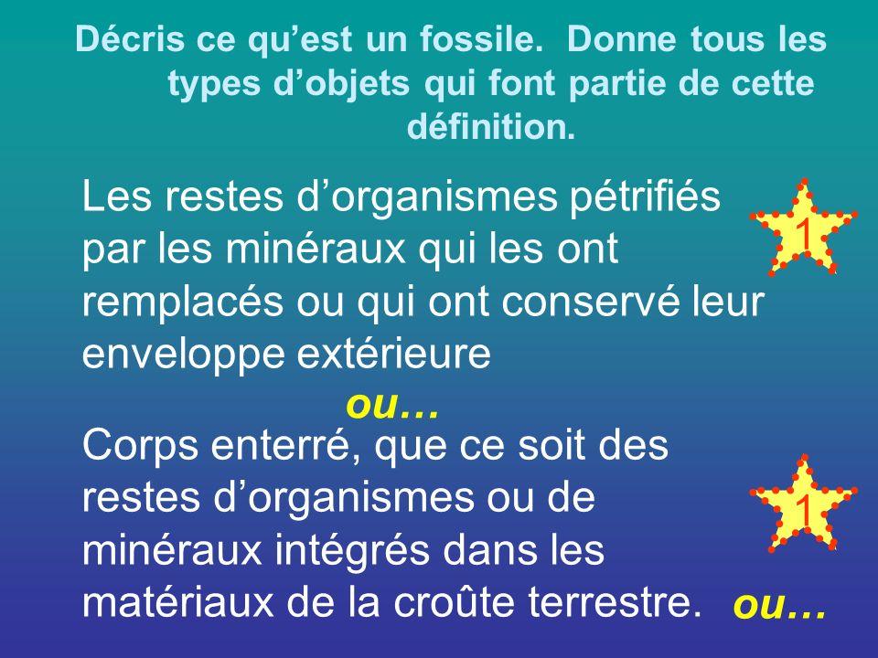 Décris ce quest un fossile.Donne tous les types dobjets qui font partie de cette définition.