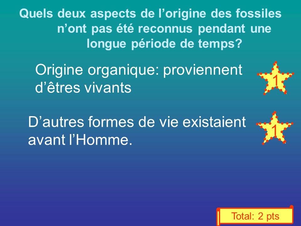 Quels deux aspects de lorigine des fossiles nont pas été reconnus pendant une longue période de temps.