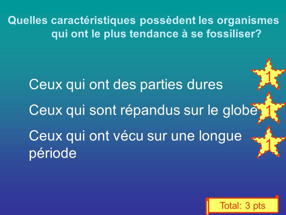 Quelles caractéristiques possèdent les organismes qui ont le plus tendance à se fossiliser.