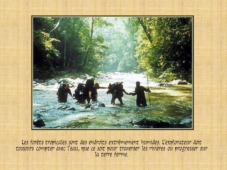 A droite, ces explorateurs étudient une zone de la forêt du Brunei, en Asie. Les plantes repoussent pour former une seconde végétation. Très dense, ce