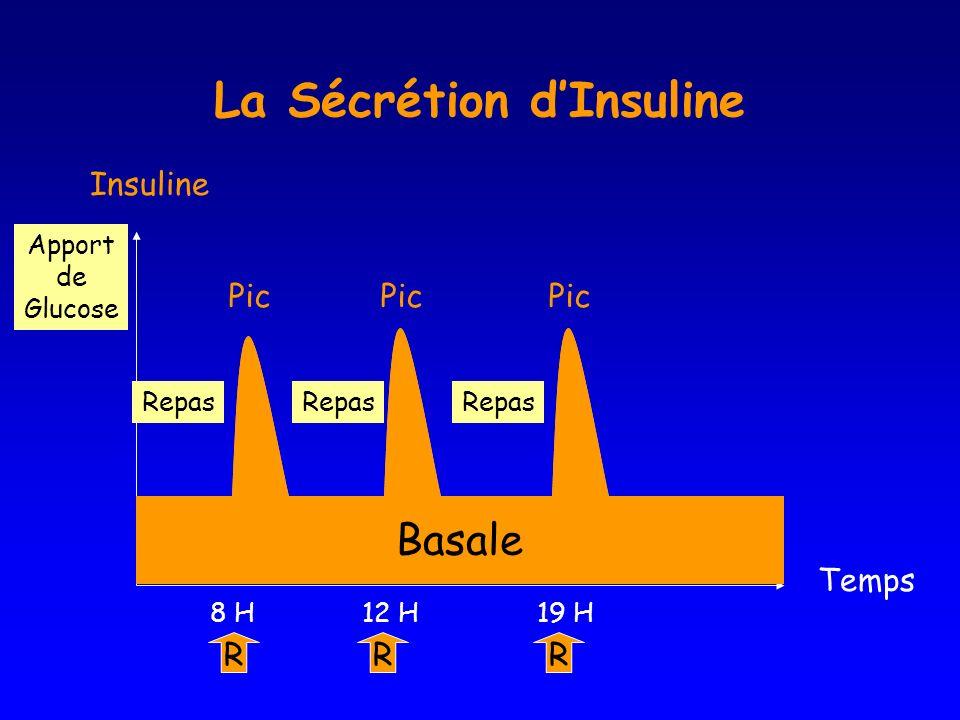 Foie Temps Insuline R 8 H R 19 H R 12 H Basale Pic Repas Apport de Glucose La Sécrétion dInsuline