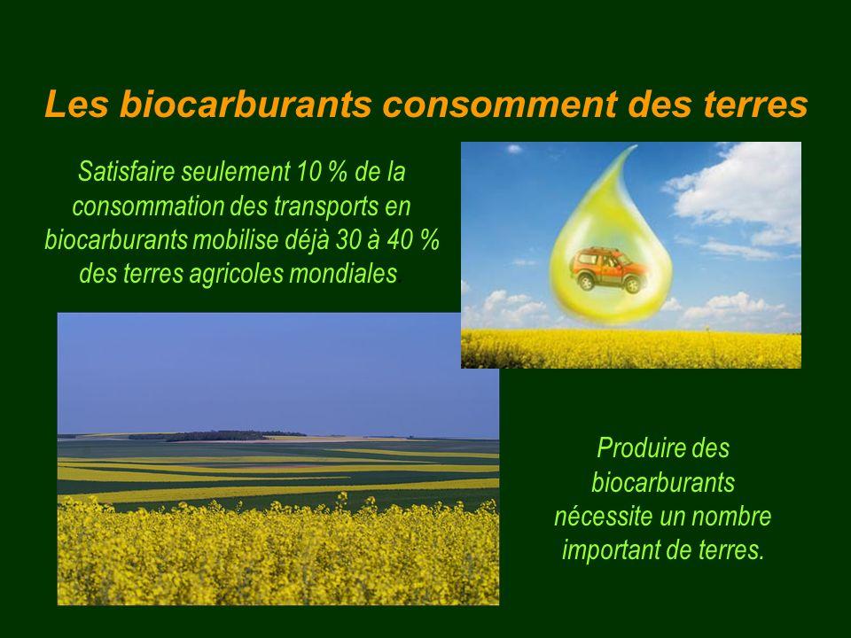 Satisfaire seulement 10 % de la consommation des transports en biocarburants mobilise déjà 30 à 40 % des terres agricoles mondiales. Produire des bioc