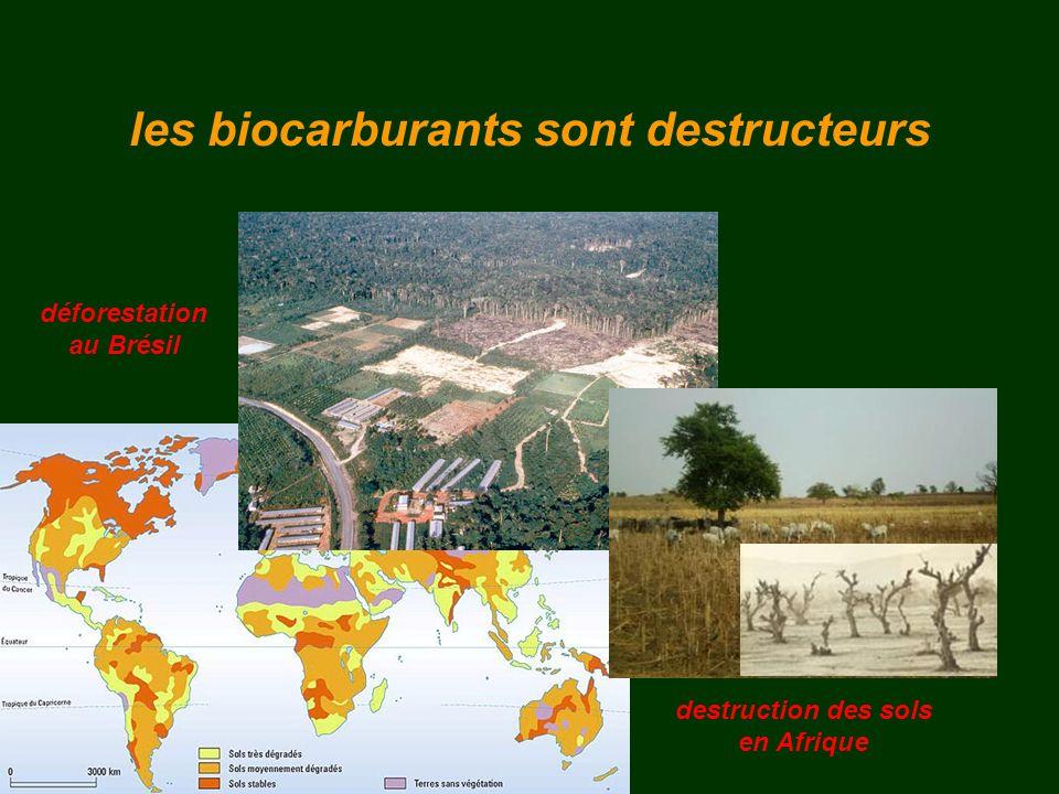 les biocarburants sont destructeurs destruction des sols en Afrique déforestation au Brésil