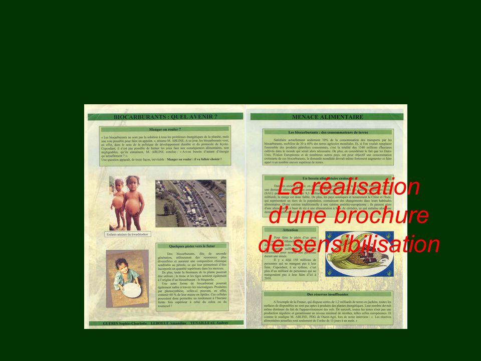 La réalisation dune brochure de sensibilisation