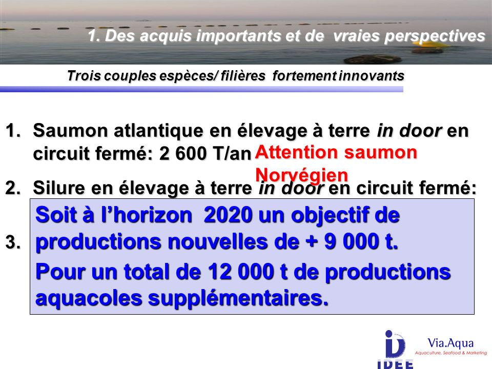 1.Saumon atlantique en élevage à terre in door en circuit fermé: 2 600 T/an 2.Silure en élevage à terre in door en circuit fermé: 5 500 T/an 3.Sandre en élevage à terre in door en circuit fermé: 1 000 T/an 1.