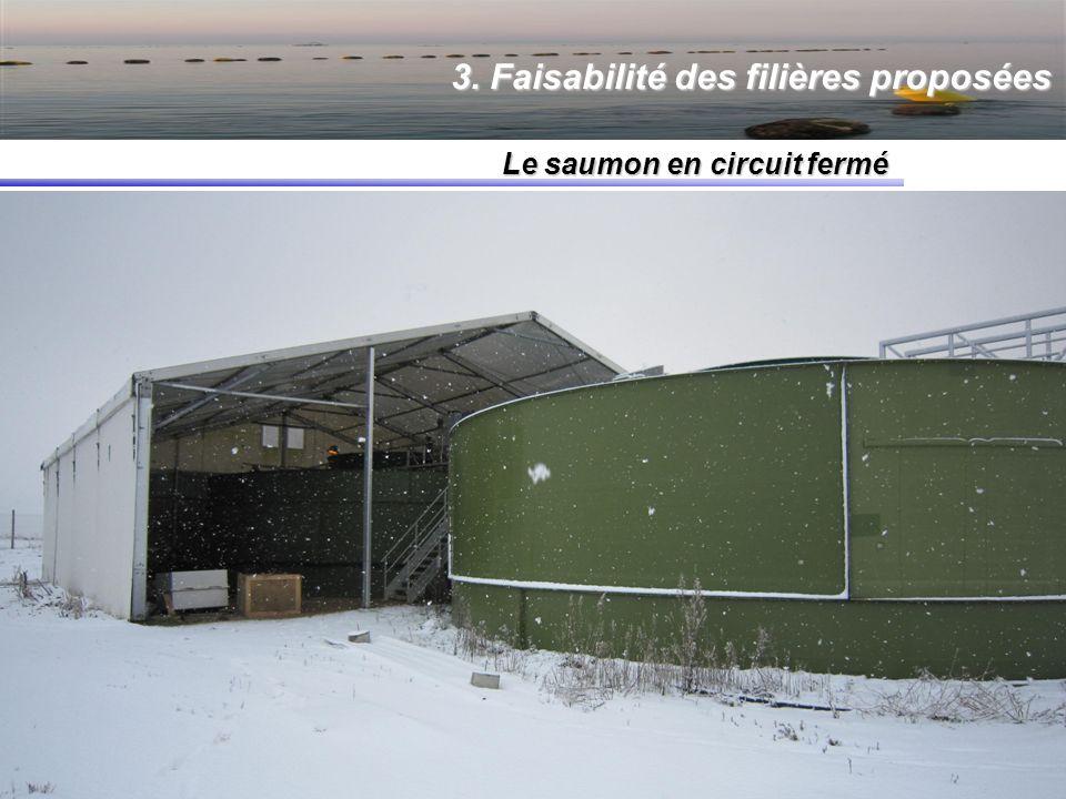 3. Faisabilité des filières proposées Le saumon en circuit fermé