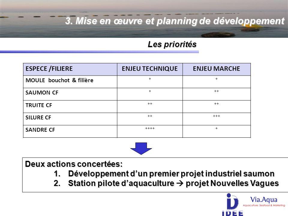 3. Mise en œuvre et planning de développement Les priorités Les priorités ESPECE /FILIEREENJEU TECHNIQUEENJEU MARCHE MOULE bouchot & filière ++ SAUMON