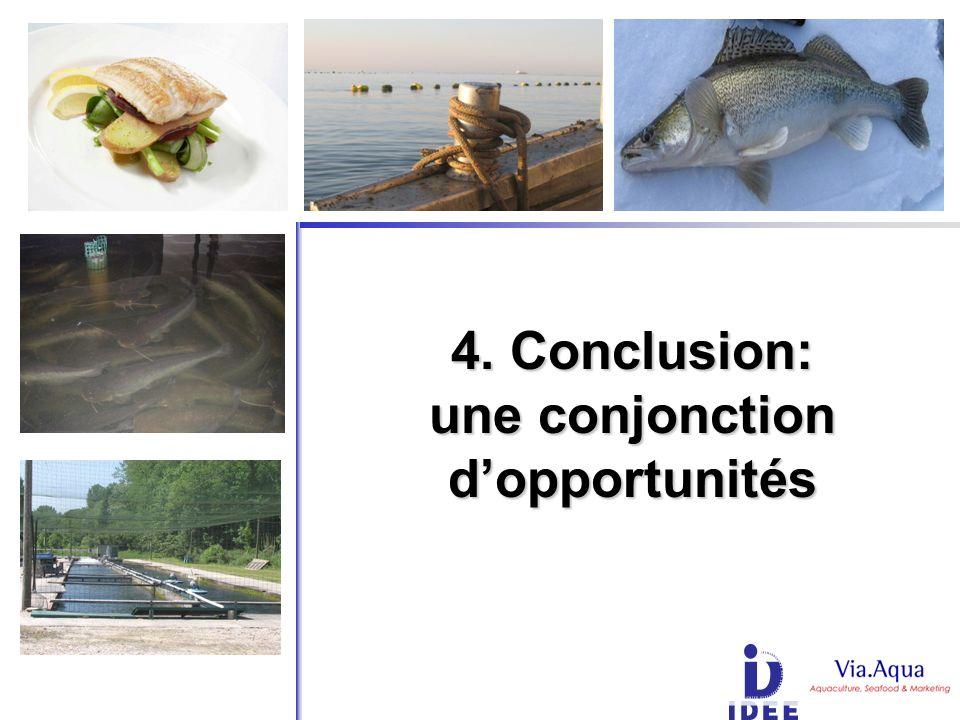 4. Conclusion: une conjonction dopportunités