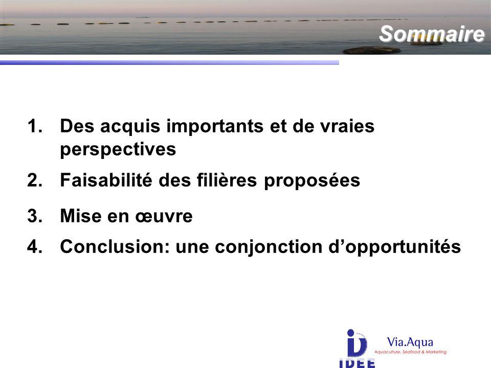 Sommaire 1.Des acquis importants et de vraies perspectives 2.Faisabilité des filières proposées 3.Mise en œuvre 4.Conclusion: une conjonction dopportunités