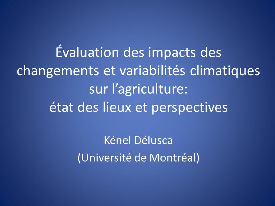 Plan de présentation Mise en contexte Principales approches dévaluation des impacts des changements et variabilités climatiques (CVC) sur lagriculture Applicabilité de ces approches dans les pays en voie de développement Nouvelles orientations Conclusion Colloque GRIOT/ACEDI 31 mai 2010
