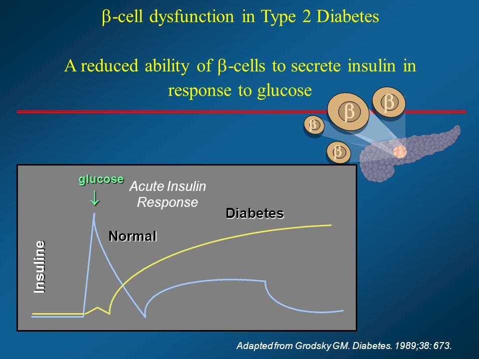 Les objectifs glycémiques clés de lautosurveillance sont Entre 0,80 et 1,2 g/l à jeun Entre 0,70 et 1,30 g/l vers 17h avant dîner 28
