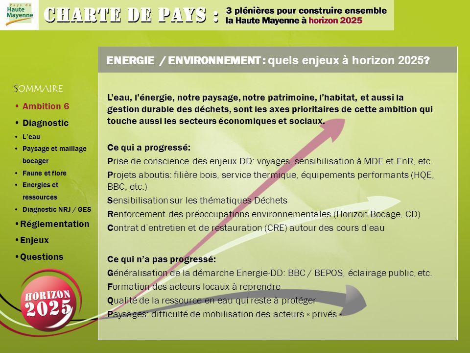 ENERGIE / ENVIRONNEMENT : quels enjeux à horizon 2025 .