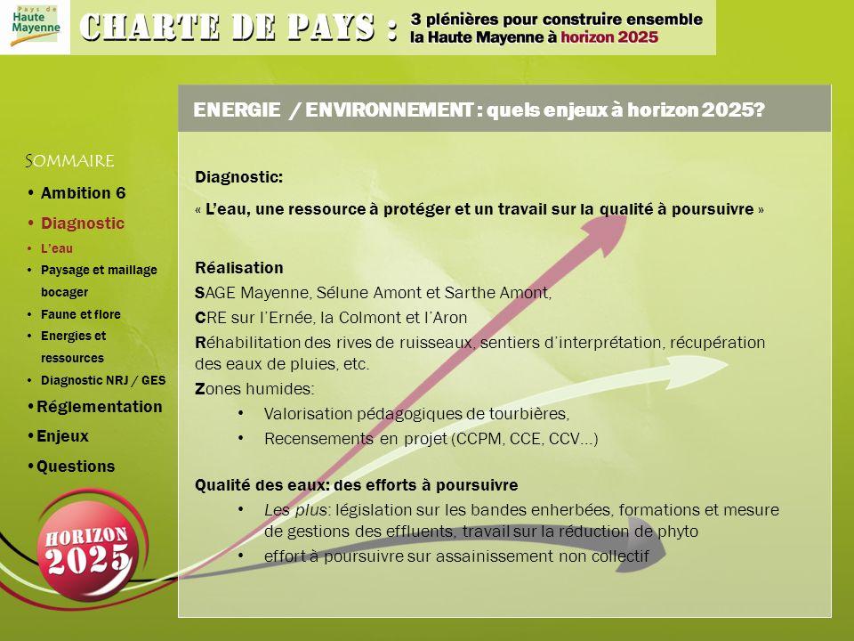 ENERGIE / ENVIRONNEMENT : quels enjeux à horizon 2025.