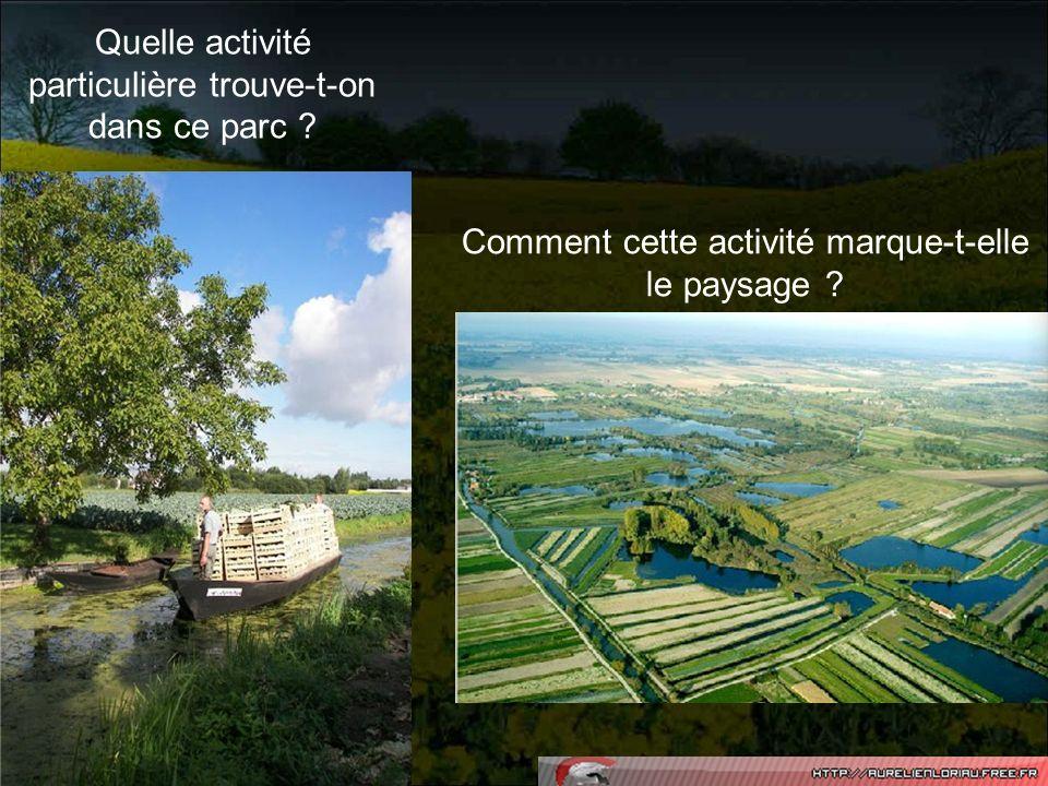 Quelle activité particulière trouve-t-on dans ce parc ? Comment cette activité marque-t-elle le paysage ?
