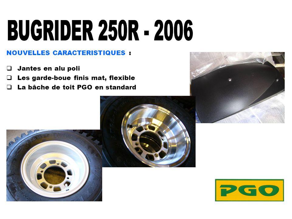 BURIDER 250R NEW MODEL 2006 COLORIS......