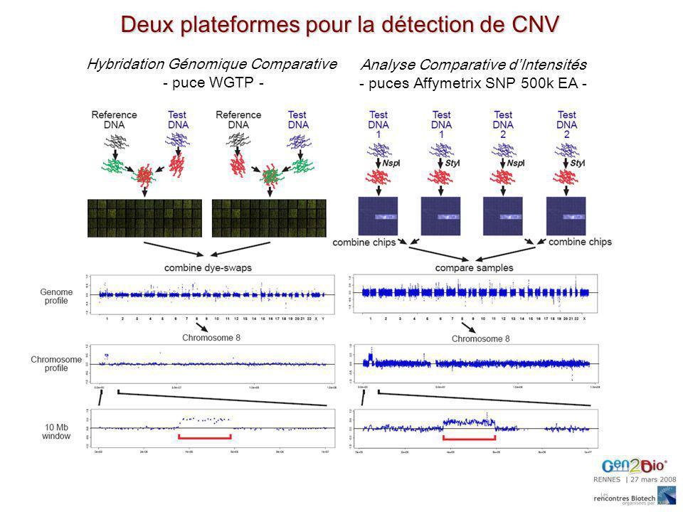 Deux plateformes pour la détection de CNV Hybridation Génomique Comparative - puce WGTP - Analyse Comparative dIntensités - puces Affymetrix SNP 500k