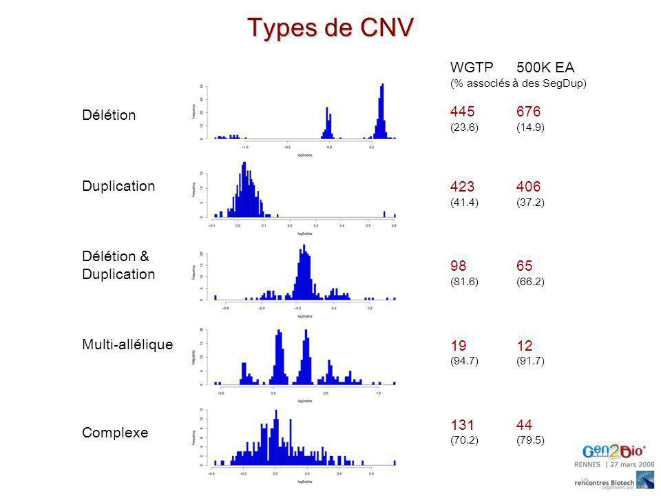 Types de CNV Délétion Duplication Délétion & Duplication Multi-allélique Complexe WGTP 500K EA (% associés à des SegDup) 445676 (23.6)(14.9) 423406 (4