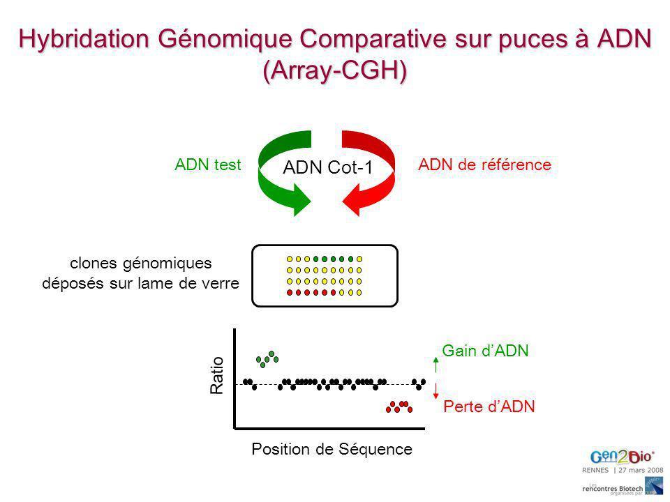 Hybridation Génomique Comparative sur puces à ADN (Array-CGH) ADN testADN de référence Ratio Position de Séquence ADN Cot-1 clones génomiques déposés