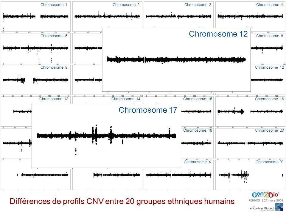 Chromosome 1Chromosome 2Chromosome 3Chromosome 4 Chromosome 5Chromosome 6Chromosome 7Chromosome 8 Chromosome 9Chromosome 10Chromosome 11Chromosome 12