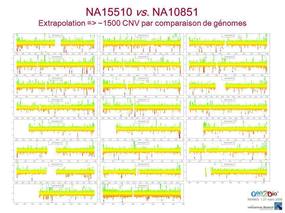 NA15510 vs. NA10851 Extrapolation => ~1500 CNV par comparaison de génomes