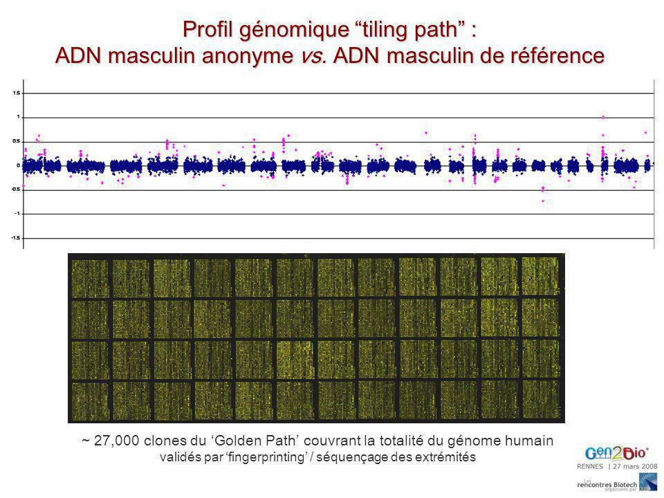 Profil génomique tiling path : ADN masculin anonyme vs. ADN masculin de référence ~ 27,000 clones du Golden Path couvrant la totalité du génome humain