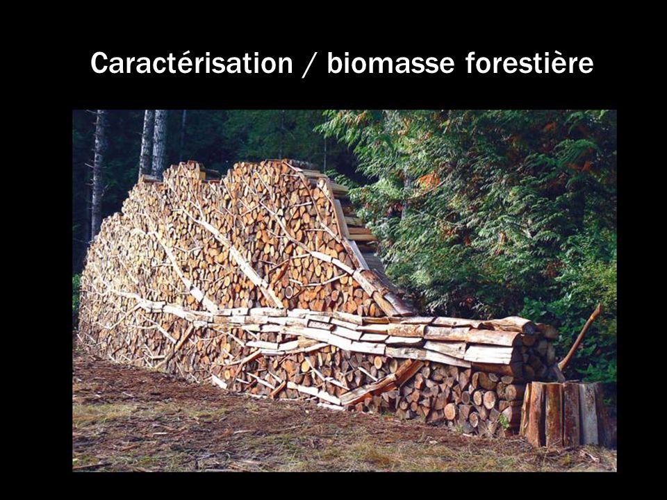Caractérisation / biomasse forestière
