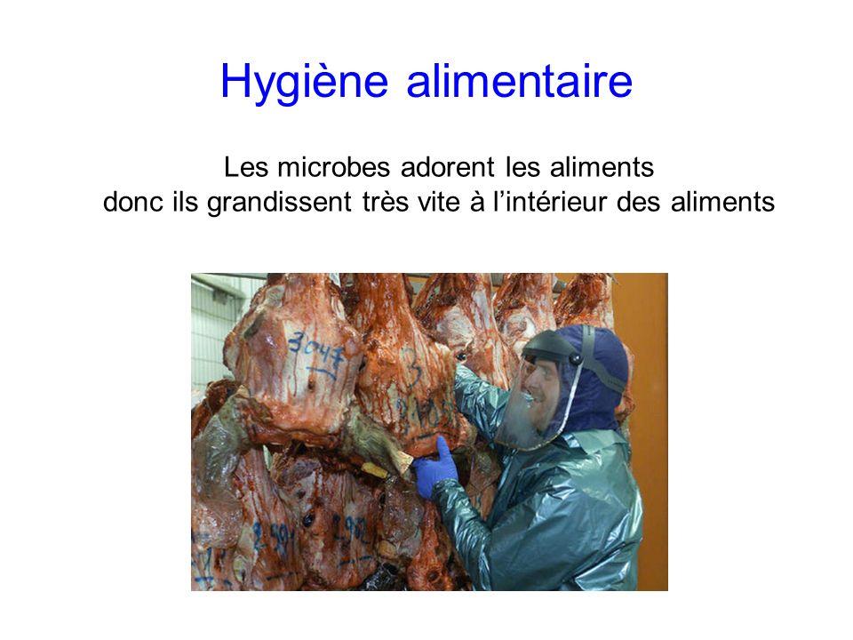 Hygiène alimentaire Les microbes adorent les aliments donc ils grandissent très vite à lintérieur des aliments