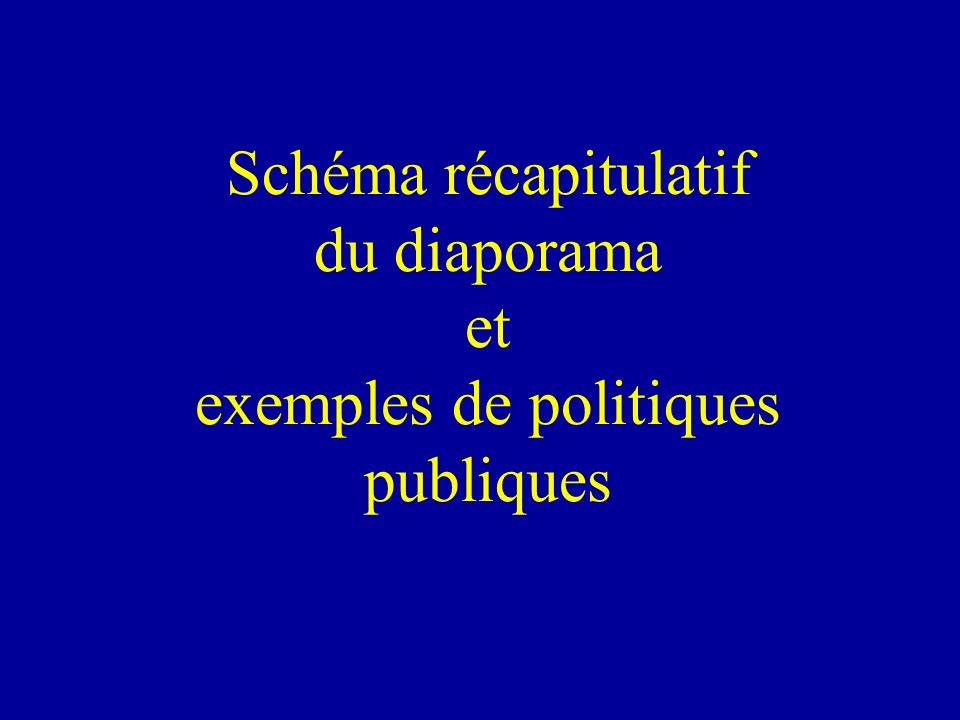 Schéma récapitulatif du diaporama et exemples de politiques publiques