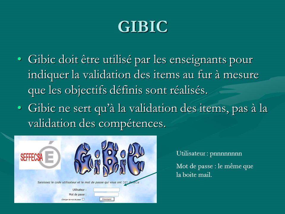 GIBIC Gibic doit être utilisé par les enseignants pour indiquer la validation des items au fur à mesure que les objectifs définis sont réalisés.Gibic