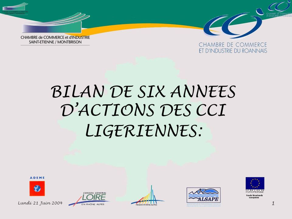 Lundi 21 Juin 2004 1 BILAN DE SIX ANNEES DACTIONS DES CCI LIGERIENNES: