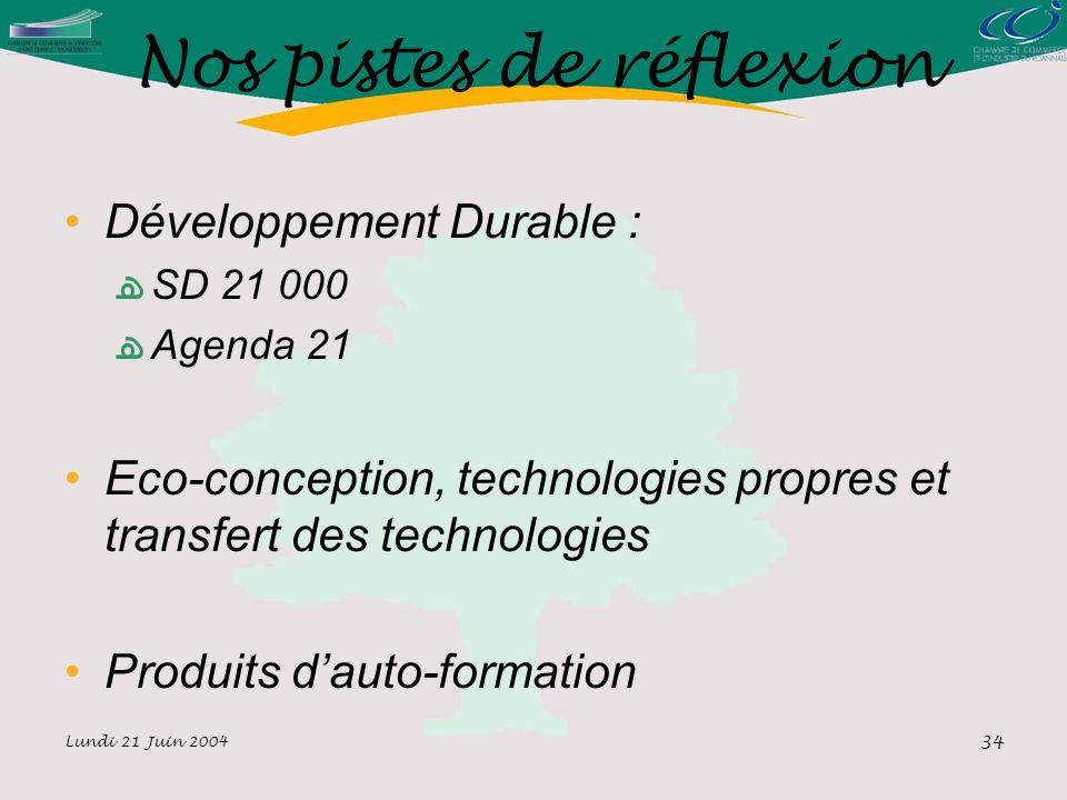 Lundi 21 Juin 2004 34 Nos pistes de réflexion Développement Durable : SD 21 000 Agenda 21 Eco-conception, technologies propres et transfert des technologies Produits dauto-formation