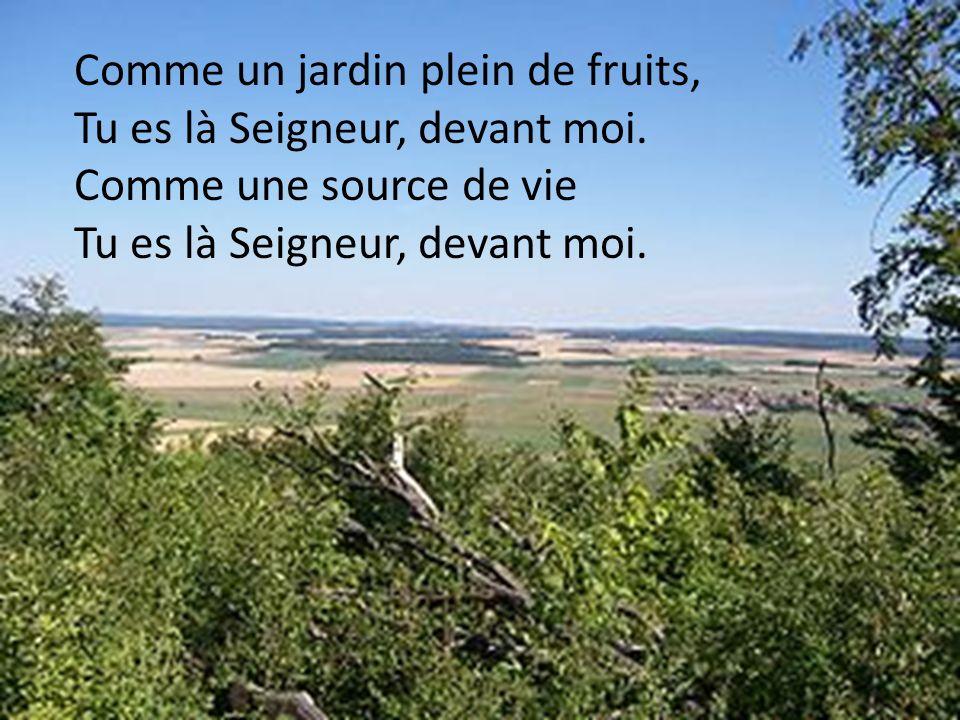 Comme un jardin plein de fruits, Tu es là Seigneur, devant moi. Comme une source de vie Tu es là Seigneur, devant moi.