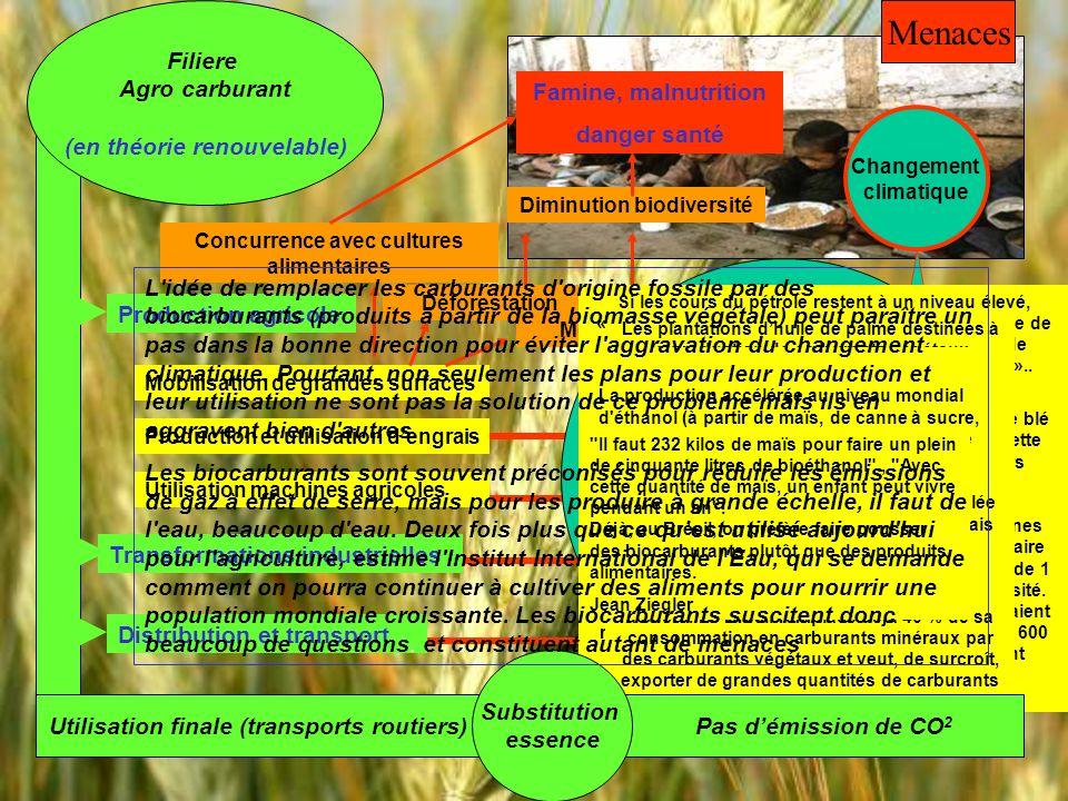 Emission de gaz a effet serre Filiere Agro carburant (en théorie renouvelable) Utilisation finale (transports routiers) Production agricole Transforma