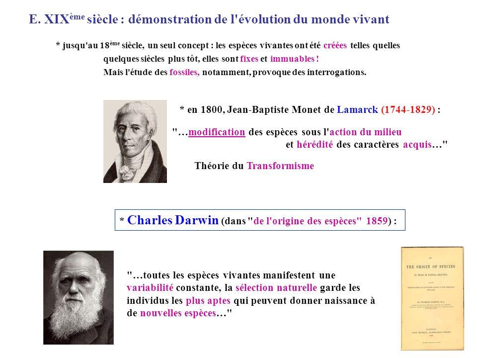 Schématisation de la théorie de l évolution selon Charles Darwin conditions de milieu changent a e d c b f nouvelle espèce c a e d b f Espèce A 1 variabilité intraspécifique 2 sélection naturelle descendance De nombreuses découvertes confirmant cette théorie ont été faites depuis les travaux de Darwin : * lois de l hérédité (Mendel, 1866) * chromosomes et mutations (responsables de la variabilité intraspécifique) (Morgan vers 1900) * ADN support de l hérédité (1944)…