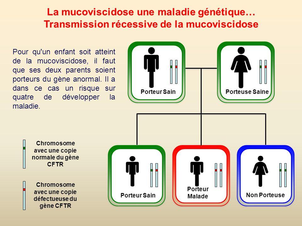13 La mucoviscidose en Bretagne La Bretagne est particulièrement touchée, avec un porteur sur 20 personnes : un bébé sur 1600 est atteint de la mucoviscidose.