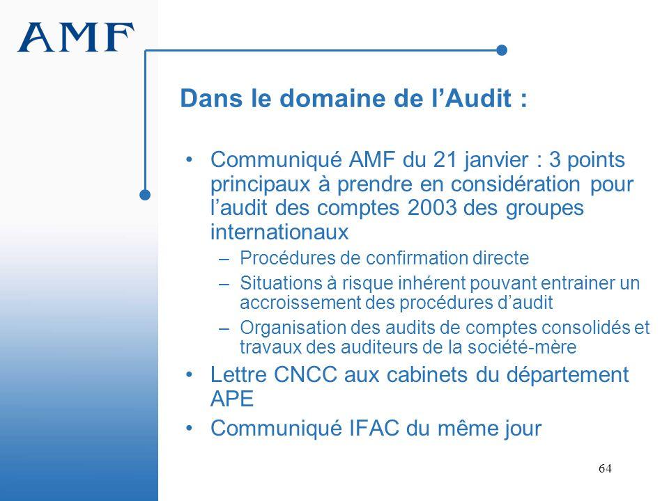 64 Dans le domaine de lAudit : Communiqué AMF du 21 janvier : 3 points principaux à prendre en considération pour laudit des comptes 2003 des groupes