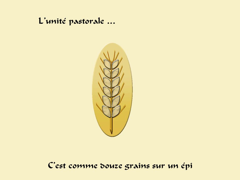 Epis Lunité pastorale … Cest comme douze grains sur un épi