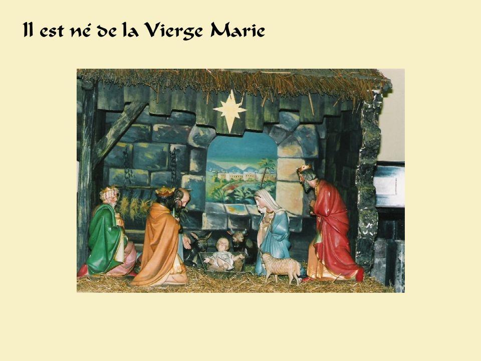 Crèche Il est né de la Vierge Marie