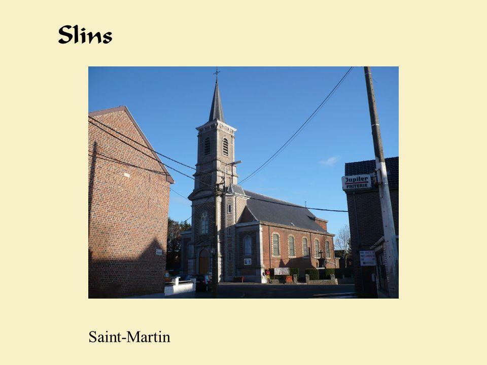 Slinbs Slins Saint-Martin