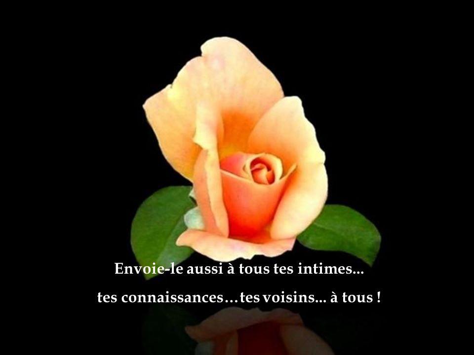 Laisse DIEU toucher ton cœur … quIl te fasse envoyer ce message à tous tes amis…