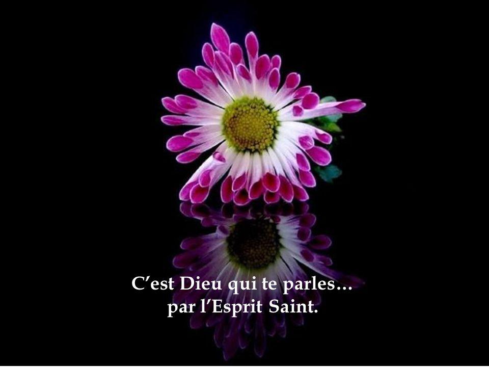 Cest Dieu qui te parles… par lEsprit Saint.