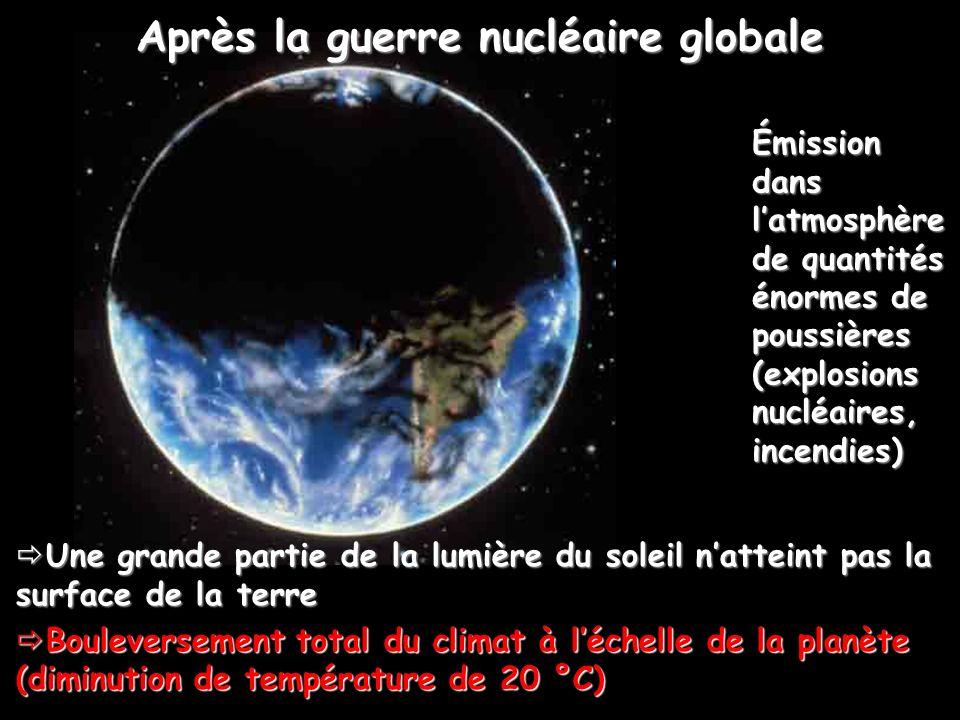 Après la guerre nucléaire globale Une grande partie de la lumière du soleil natteint pas la surface de la terre Une grande partie de la lumière du sol
