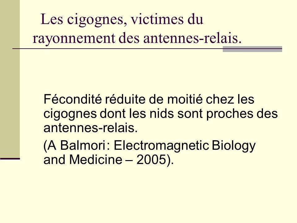 Les cigognes, victimes du rayonnement des antennes-relais. Fécondité réduite de moitié chez les cigognes dont les nids sont proches des antennes-relai
