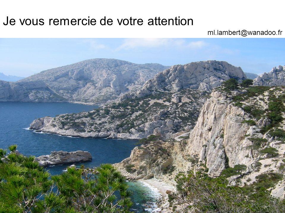 Je vous remercie de votre attention ml.lambert@wanadoo.fr