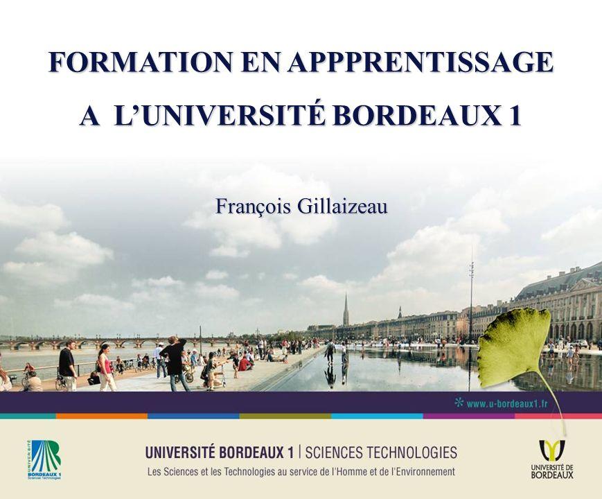 FORMATION EN APPPRENTISSAGE A LUNIVERSITÉ BORDEAUX 1 François Gillaizeau