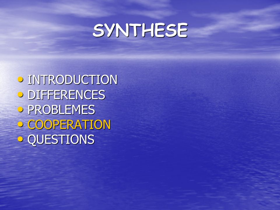 SYNTHESE INTRODUCTION INTRODUCTION DIFFERENCES DIFFERENCES PROBLEMES PROBLEMES COOPERATION COOPERATION QUESTIONS QUESTIONS