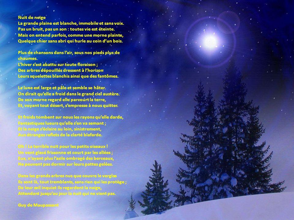 Nuit de neige La grande plaine est blanche, immobile et sans voix. Pas un bruit, pas un son : toutes vie est éteinte. Mais on entend parfois, comme un