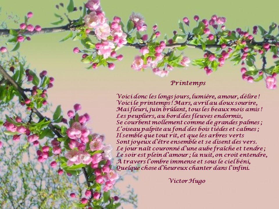 Printemps Voici donc les longs jours, lumière, amour, délire ! Voici le printemps ! Mars, avril au doux sourire, Mai fleuri, juin brûlant, tous les be