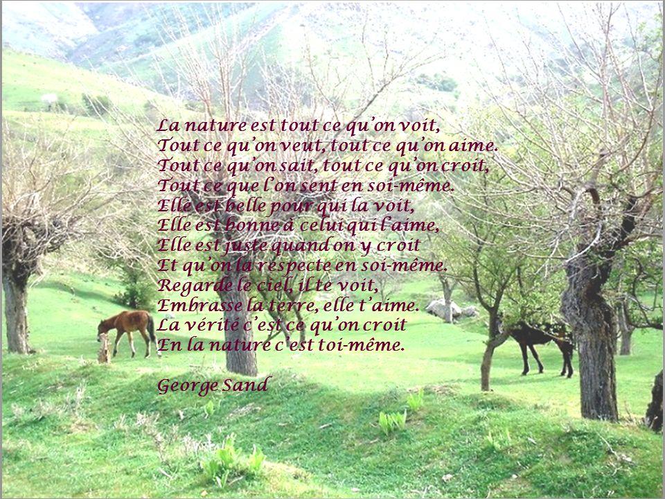 Ecoute mon ami La nature qui parle Laisse-toi envahir Sans jamais la laisser mourir.